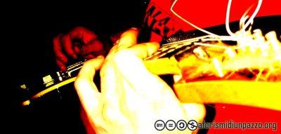 il musico