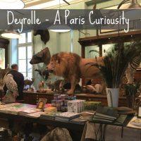 Deyrolle - A Parisian Curiosity