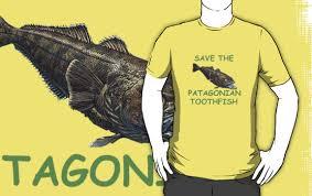 Sava Patagonian TF