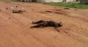 Cadaveri 2