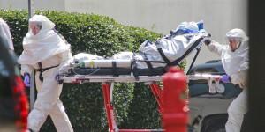 ebola barella  barellieri