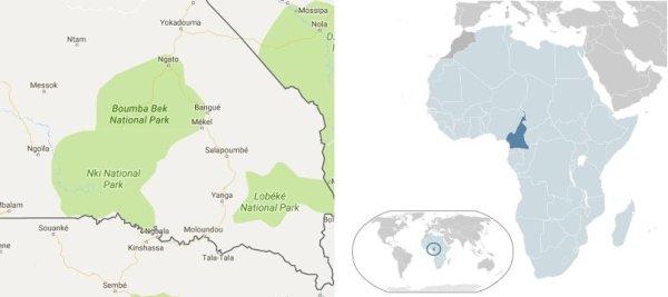 Area degli abusi contro i pigmei Baka e mappa dell'Africa con il Camerun