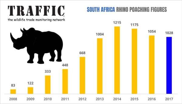 Grafico di traffic.org