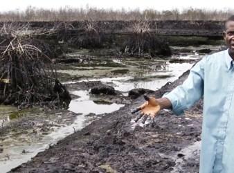 Inquinamento da petrolio nel Delta del Niger (Courtesy Amnesty International)
