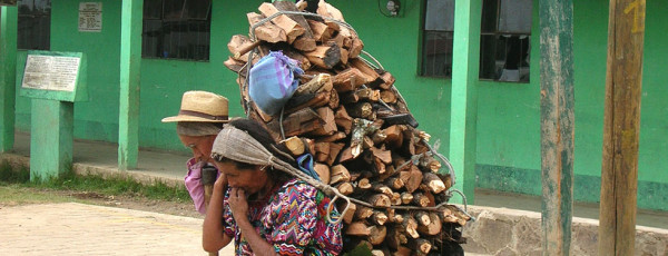 Donna trasporta il legname raccolto per usi domestici