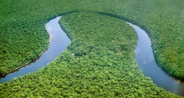 Una parte del Bacino del Congo