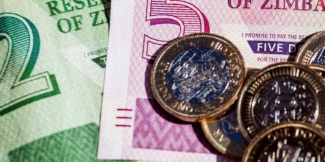 Valuta dello Zimbabwe introdotte a giugno dal governo. Oggi inflazione salita al 300 per cento