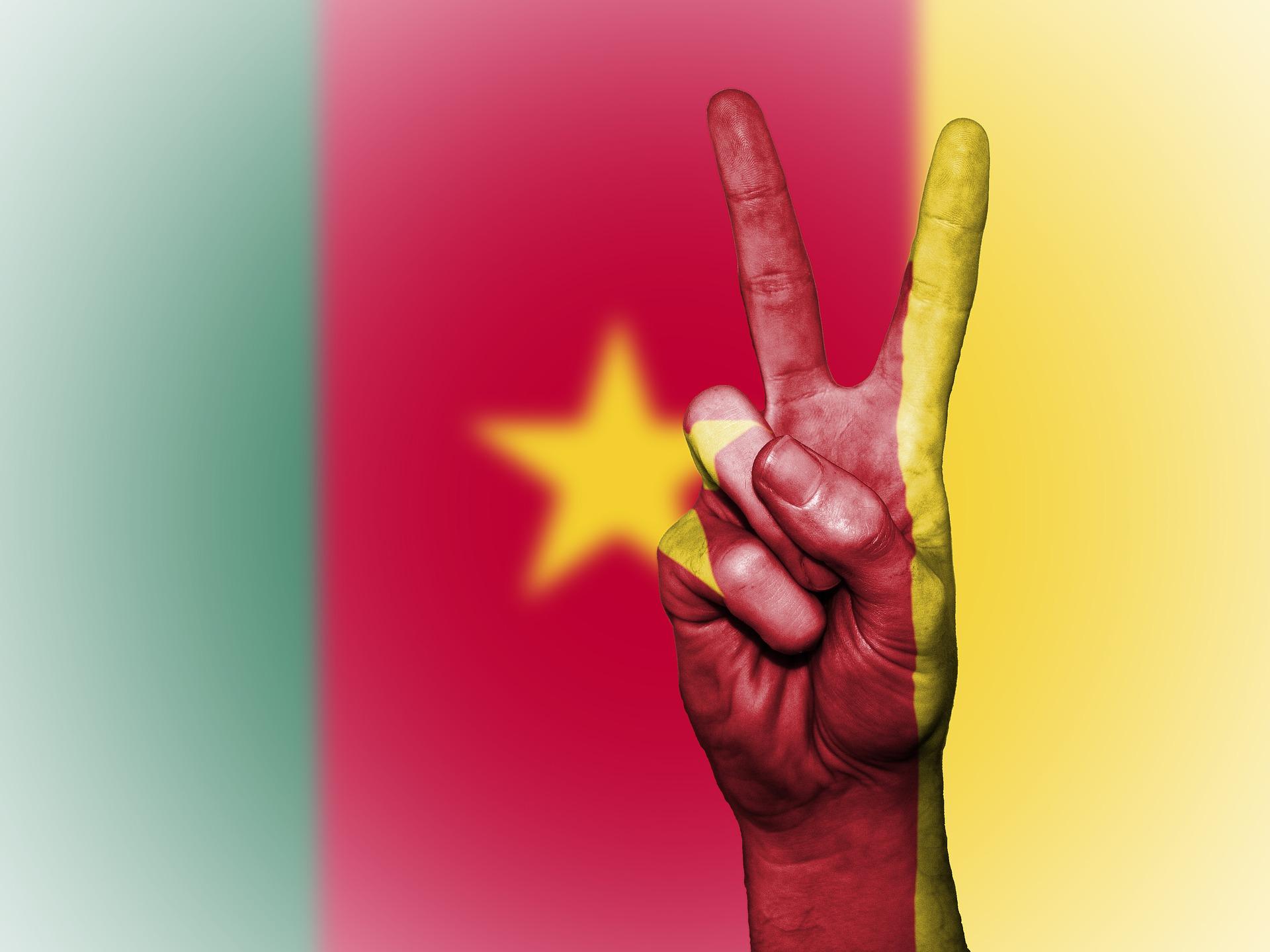 AfriCallShop: Flag of Cameroon