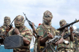 Who are Nigeria's Boko Haram?