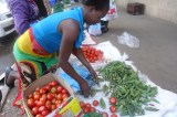 Zimbabwe Informal Sector 6th Biggest in Africa