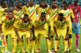 Mali clinched third spot at the FIFA U-20 World Cup.