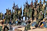 Cameroon Govt Begs for International Help Against Boko Haram Terror