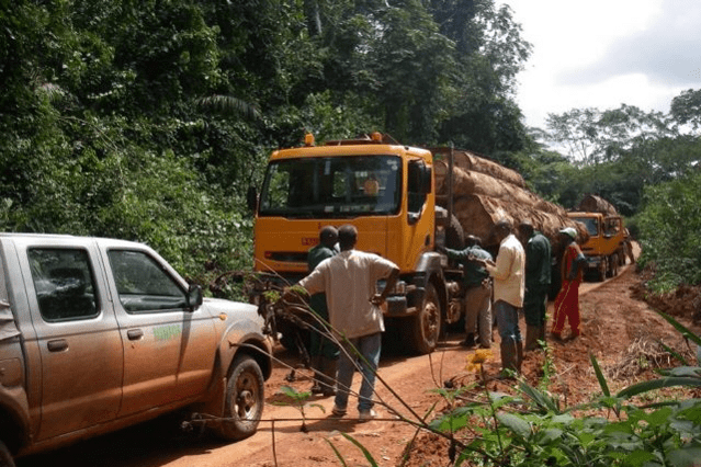 trade in cameroon