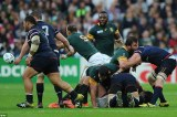 Rugby World Cup 2015: South Africa's Frans Malherbe Involved In A Biting scandal
