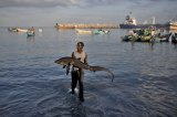 Cape Verde Joins Port State Measures Agreement to Combat Unregulated Fishing