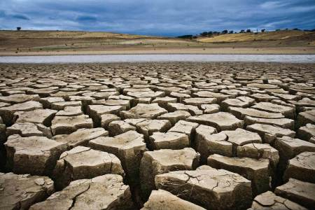 Economic growth in East Africa remains strong despite drought