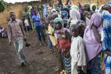 Stop Forced Return of Nigerian Refugees, UN Tells Cameroon