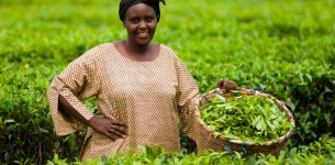 Men and Women Farmers in Benin Are Responding Differently to Climate Change