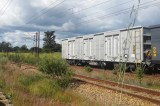 New National Railways of Zimbabwe Wagons Pay dividends