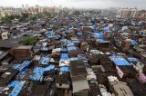 African Cities Must Address Social and Economic Issues When Upgrading Slums