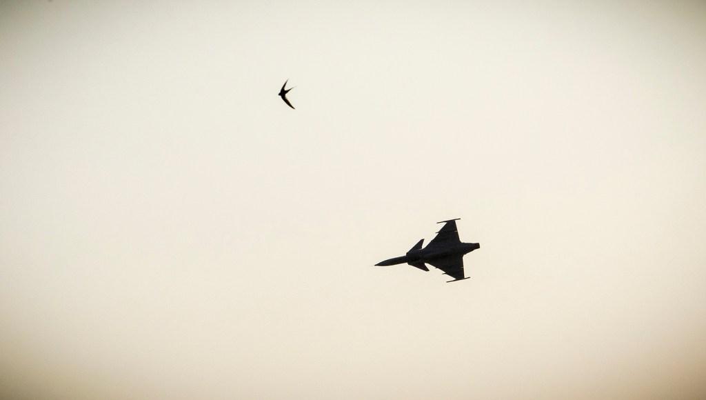A SAAF Gripen flies overhead. Photo by Trent Perkins/ADR