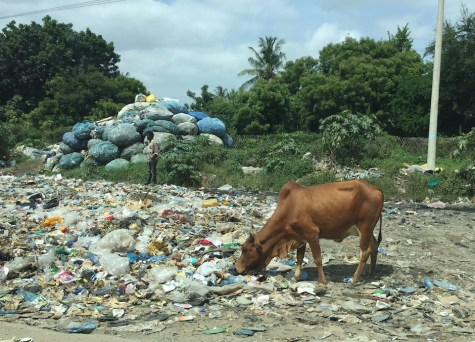 We hit TERRIBLE traffic as we entered Mombasa, and Google Maps rerouted us on a slightly back road. This was our view as we entered the city...