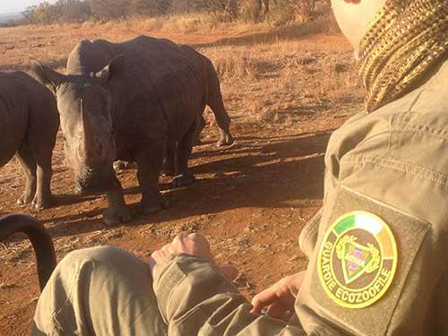 ANPANA-sudafrica-2013