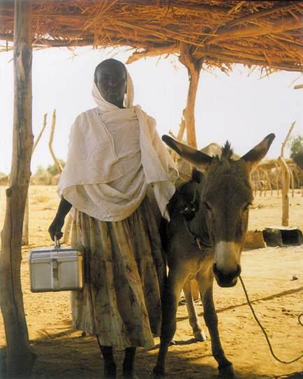 donna eritrea