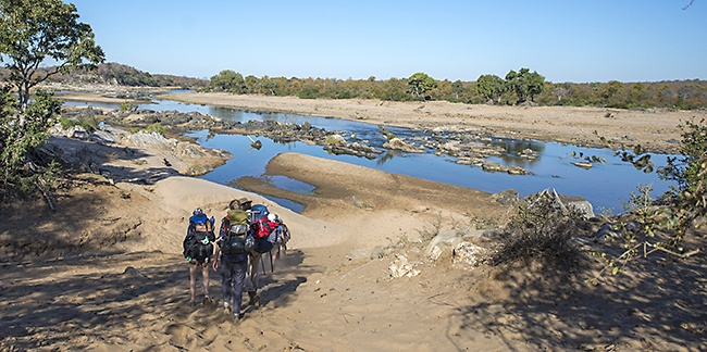 Following the meandering river