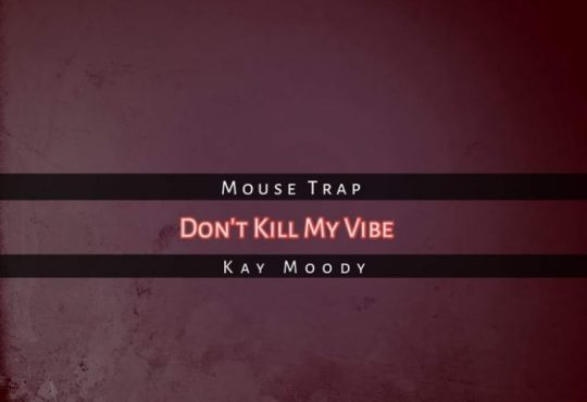 Mouse Trap ft Kay Moody - Don't Kill My Vibe