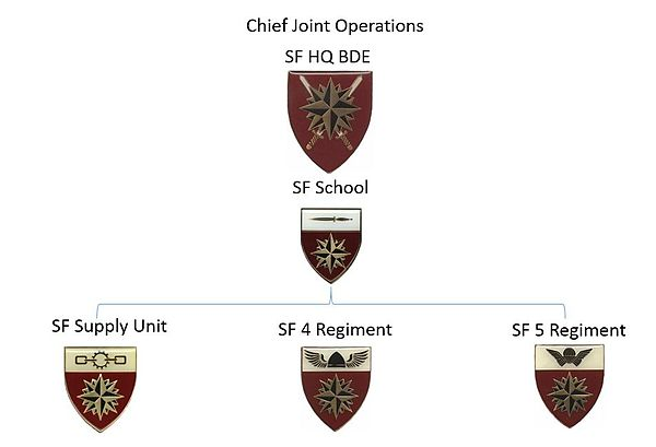 SANDF Special Forces Organigram