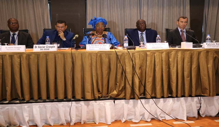 "FAO, partners advocate for ""one health"" initiative in West Africa"