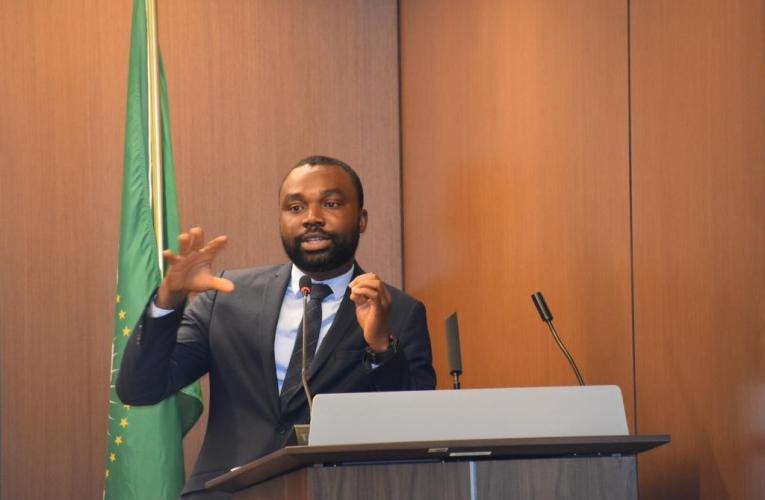 INTERVIEW | How AU ECOSOCC is supporting Africa's response to COVID-19 – Kyeretwie Osei