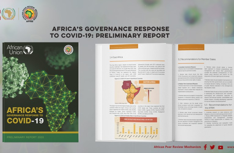 INDEPTH | When APRM unveiled its preliminary report on Africa's governance response to COVID-19