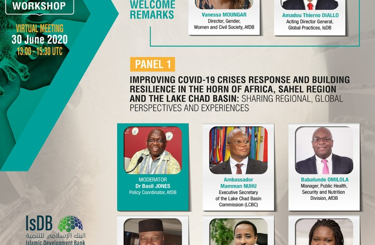 AfDB, IsDB seeks to strengthen CSOs capacity in Africa's fragile countries against COVID19