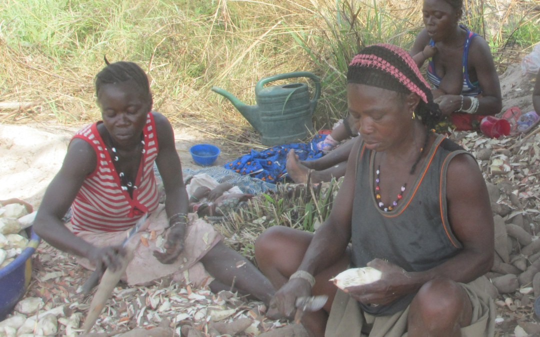 The Faith Healing Agricultural Project in Sierra Leone