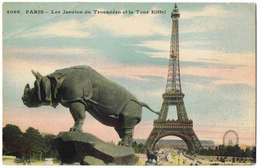 Rhino et tour