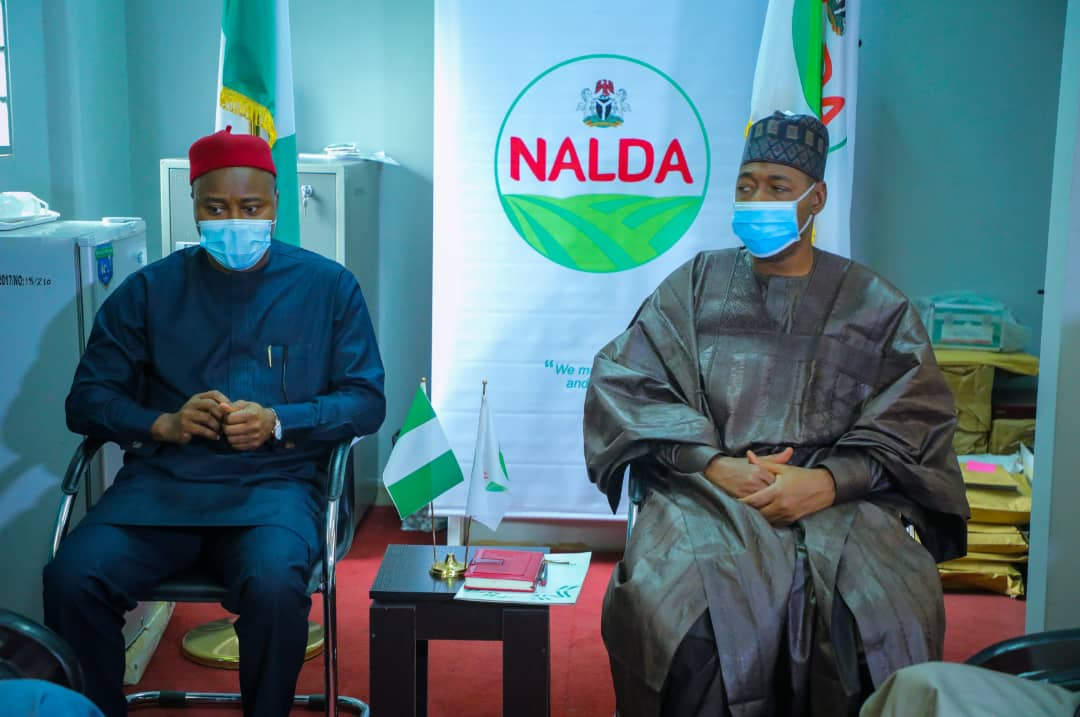Packaging: NALDA names Borno as official sacks producer for national rice programme