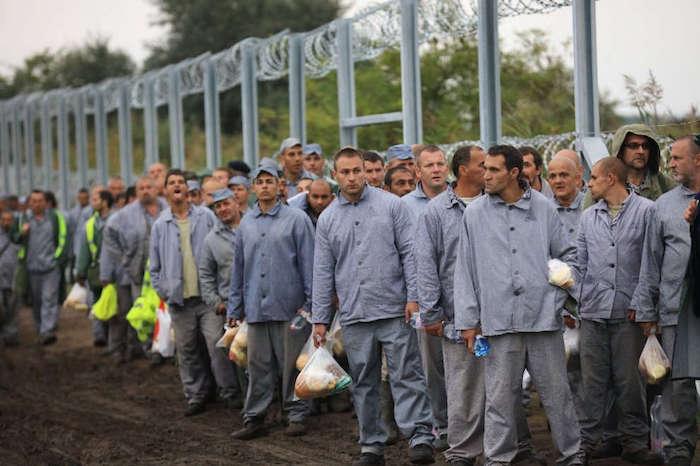 detenuti ungheresi