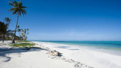 Zanzibar | Safari and Beach Holiday | Tanzania | Africa ...