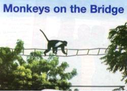 Un colobo sobre el puente