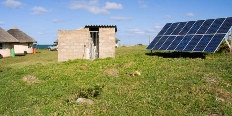 nigeria zola electric nouvel entrant