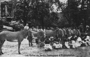 zoos-humains-1877-les-gallas
