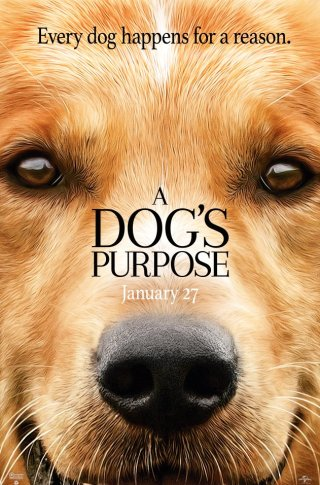 dogs-purpose