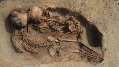 Photo of Largest child sacrifice from South American history discovered