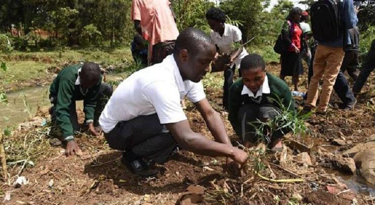 Photo of Ethiopia wants to plant 200 million trees in one day