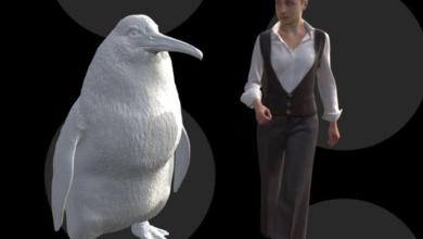 """Photo of Giant penguin """"as big as human"""" found in New Zealand"""