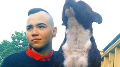 Photo of Faithful dog dies 15 minutes after the owner (25) dies of cancer