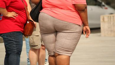 Photo of Obesity would be contagious, study finds