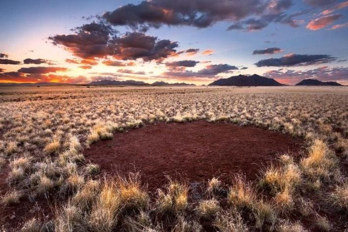 Namibia's 'Fairy Circles' have mystified scientists for decades